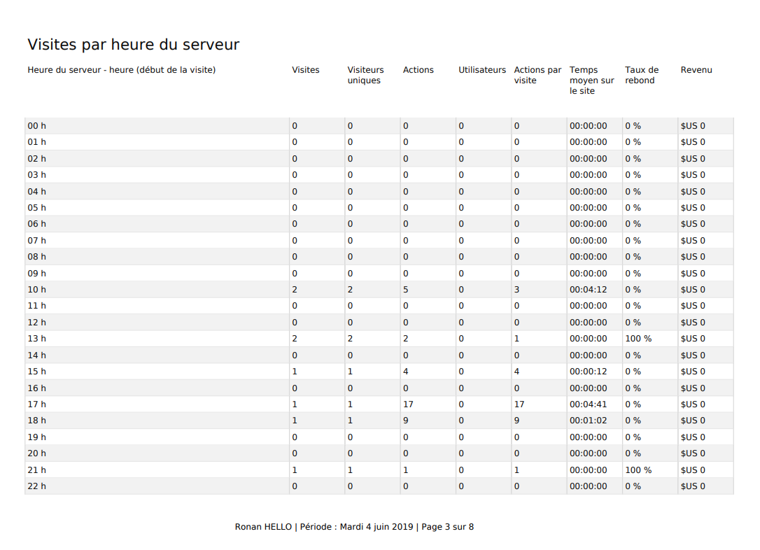 Matomo custom report PDF
